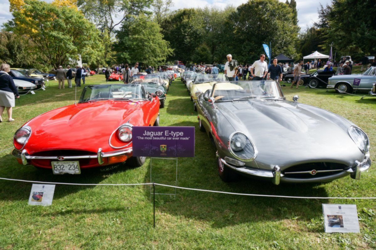 Jaguar E-Types at the Luxury Supercar Weekend Vancouver